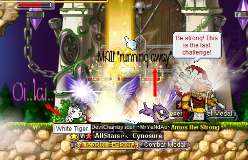Maplestory Where To Buy Pet Food